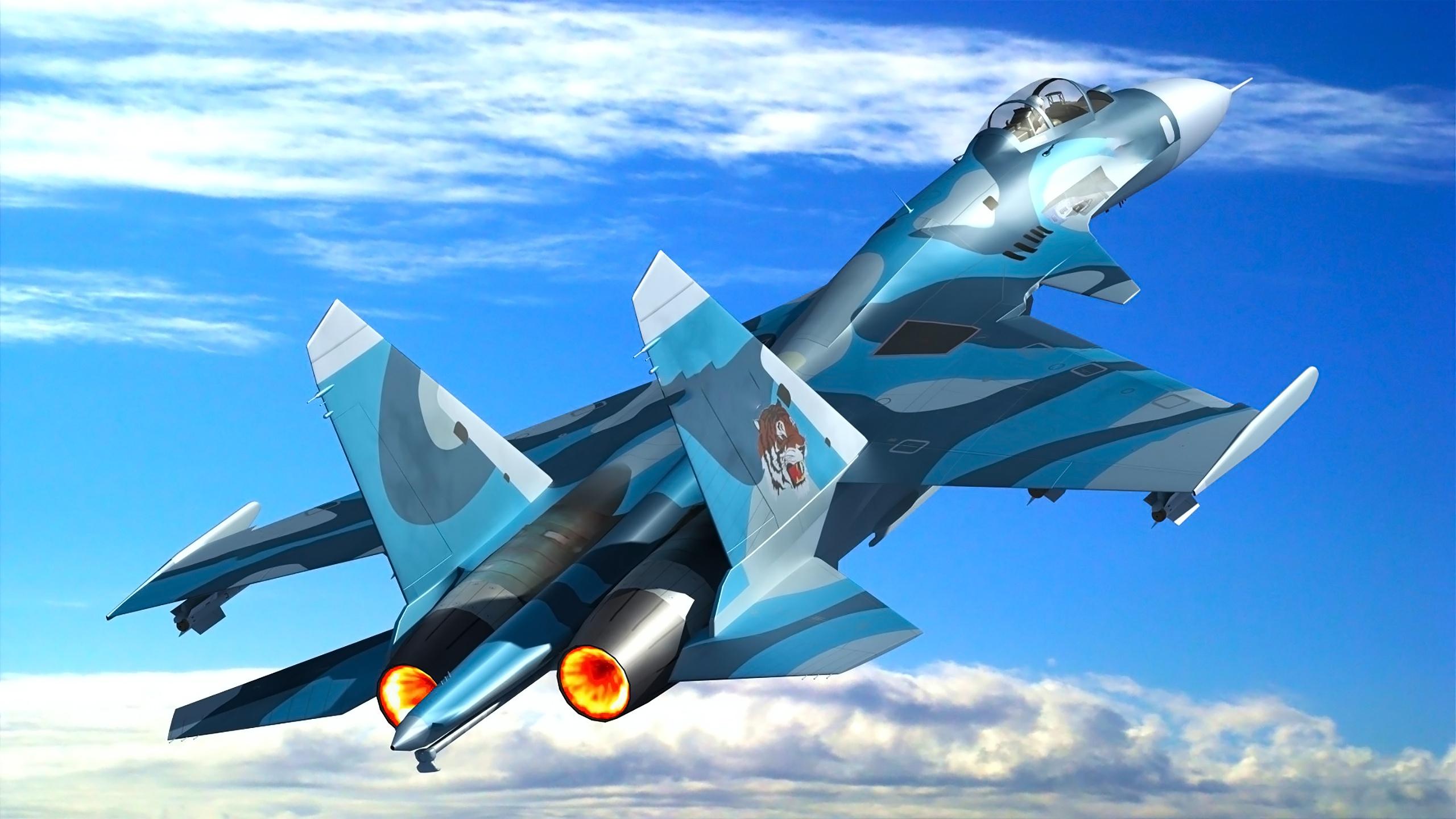 победам фотообои самолеты россии цветочным
