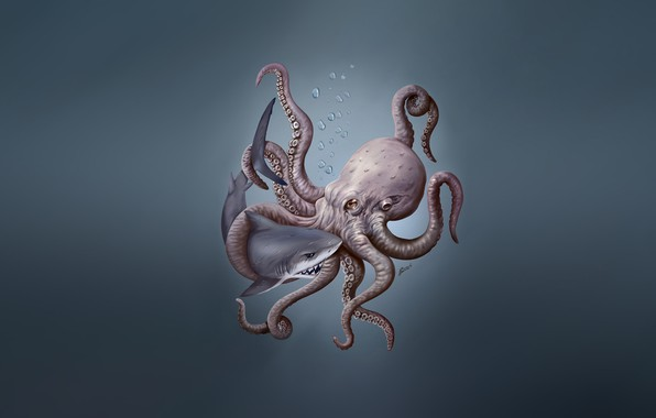 Picture Minimalism, Style, Shark, Background, Octopus, Shark, Fantasy, Illustration, Octopus, Characters, Science Fiction, Creatures, by Martin ...