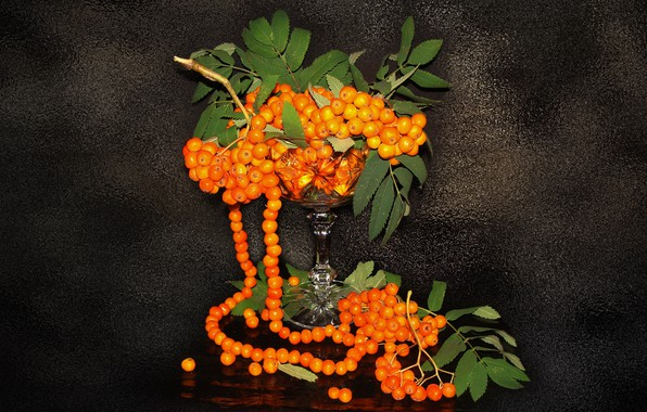 Picture still life, Rowan, the Wallpapers, author's photo by Elena Anikina, ashberry beads