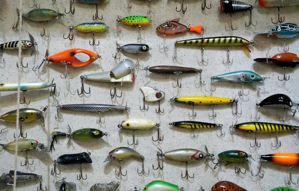 Picture fishing, hooks, tackle