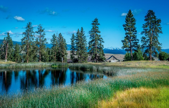Picture summer, the sky, grass, clouds, trees, mountains, comfort, lake, house, reflection, blue, blue, shore, glade, …