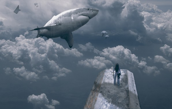 Picture girl, clouds, fish, shark, girl, clouds, shark, fish, Bingo Z