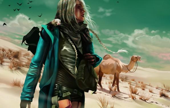 Picture girl, birds, weapons, Desert, camel, animal, peer, braids