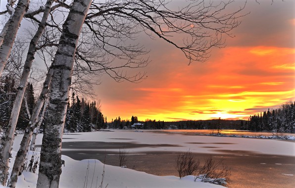 Picture winter, trees, landscape, sunset, nature, lake, Canada, birch, forest, Bank, QC, Alain Audet