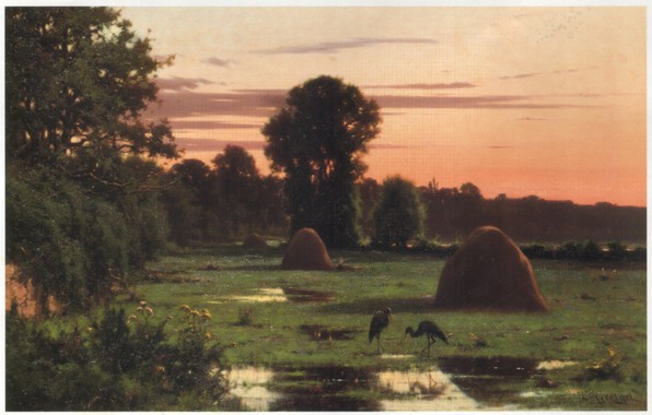 Picture trees, nature, meadows, herons, haystacks