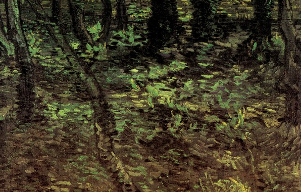 Picture forest, trees, nature, foliage, Vincent van Gogh, Undergrowth with Ivy