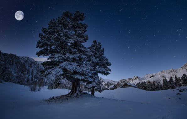 Picture winter, snow, trees, landscape, mountains, night, nature, the moon, home, stars, Austria, forest, municipality, Friedrich …