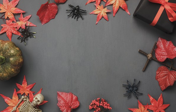 Picture autumn, leaves, background, gifts, Halloween, autumn, leaves, Halloween, gift, pumpkin