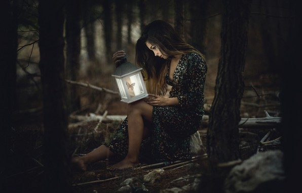 Picture forest, girl, lantern, twilight