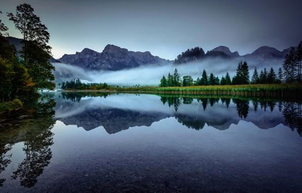 Picture trees, mountains, fog, lake, reflection, morning, Austria, Alps, Austria, Alps, Upper Austria, Upper Austria, Lake …