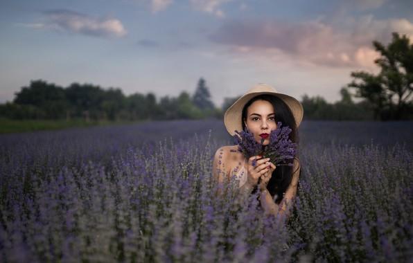 Picture field, girl, flowers, nature, Andrea Carretta
