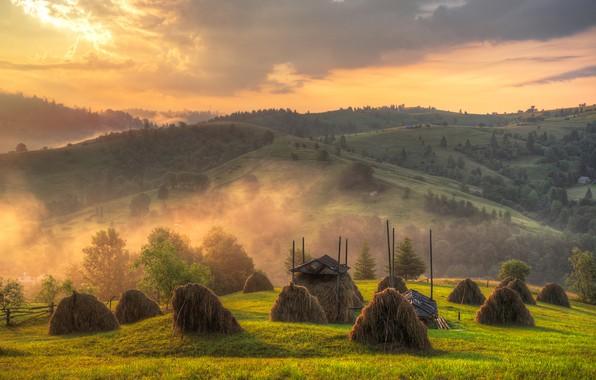 Picture landscape, nature, fog, hills, field, morning, hay, Carpathians, Ed Gordeev, Gordeev Edward, stack, Eduard Gordeev, …