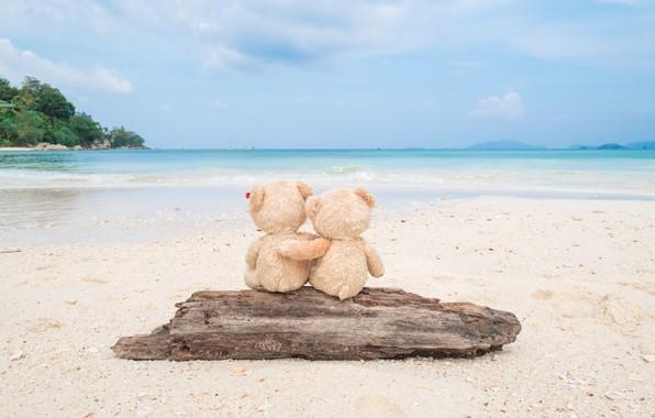 Picture sand, sea, beach, love, toy, bear, bear, pair, Board, love, two, beach, bear, sea, romantic, …