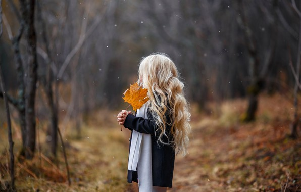 Picture autumn, sheet, girl