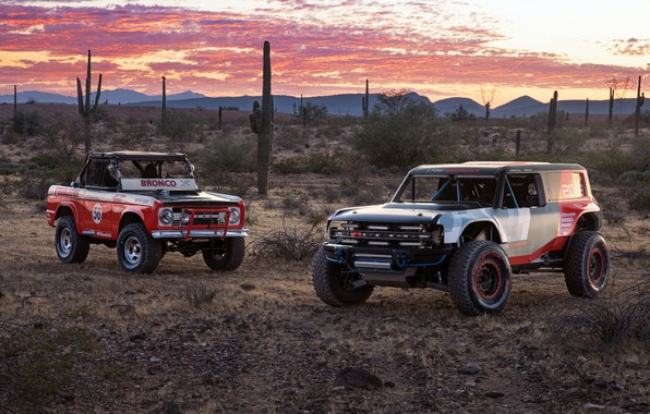 Picture Ford, Ford, Baja 1000, racing car, Bronco, motorsports, 2019, Baja 1000, Ford Bronco R race …
