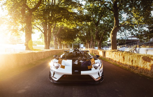 Picture Ford, Ford GT, sports car, Mk II