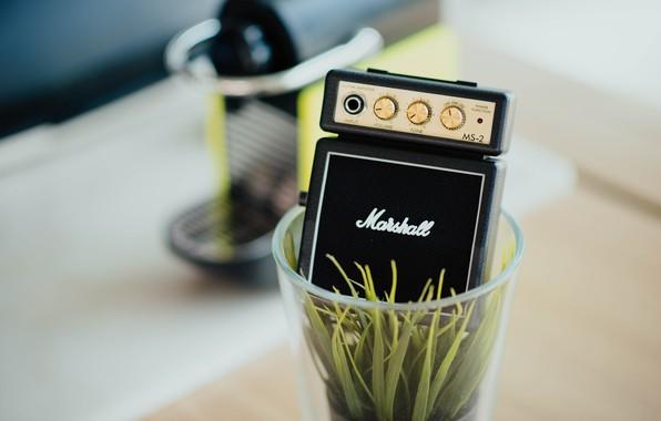 Picture glass, music, plant, music, column, glass, plant, coffee machine, column, Marshal, a coffee machine, plastic …