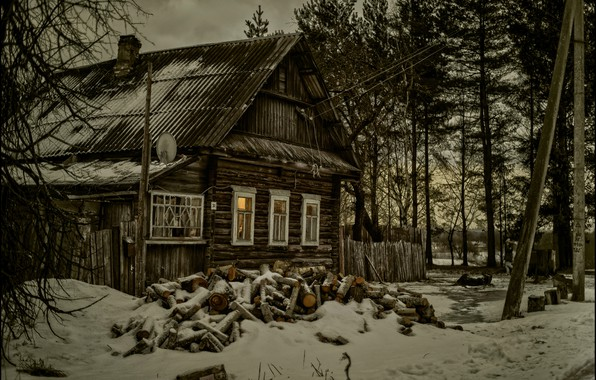 Picture snow, house, treatment, village, wood, twilight