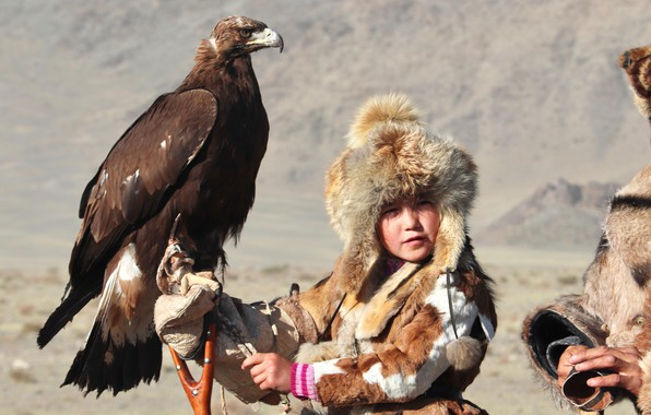 Picture BIRD, HUNTING, EAGLE