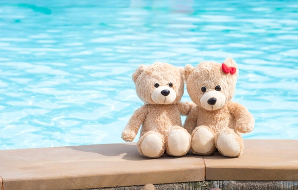 Picture sea, beach, love, toy, bear, bear, pair, love, two, beach, bear, romantic, couple, teddy, cute