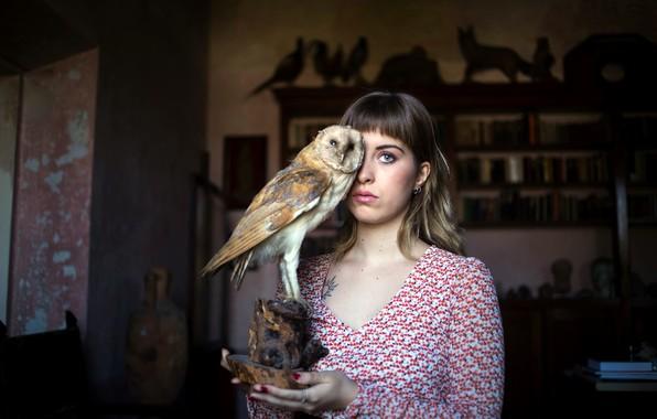 Picture girl, owl, stuffed