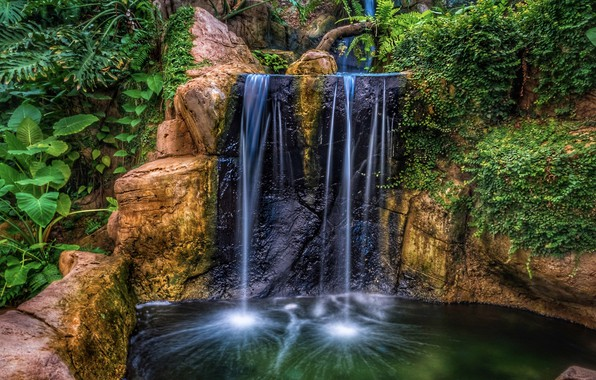 Picture water, rock, Park, waterfall, HDR, plants, rock, nature, park, waterfalls, plants