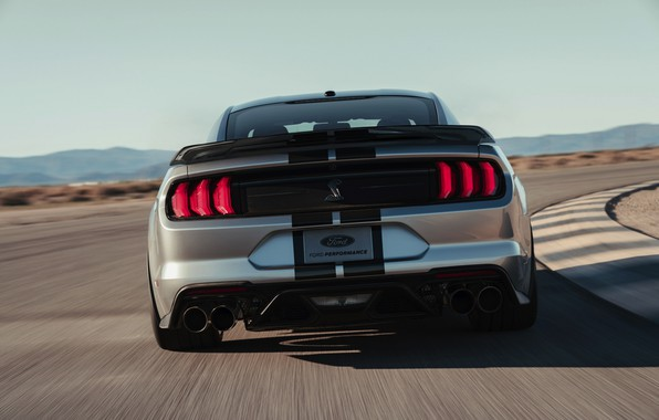 Picture Mustang, Ford, Shelby, GT500, feed, 2019, gray-silver