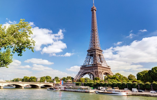 Picture Eiffel tower, branch, Bridge, Paris.
