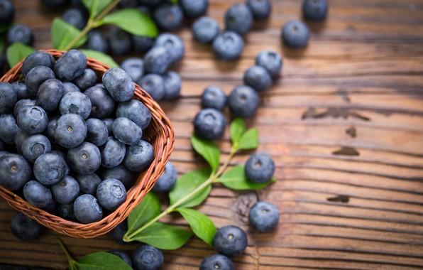 Picture berries, blueberries, fresh, wood, blueberry, blueberries, berries