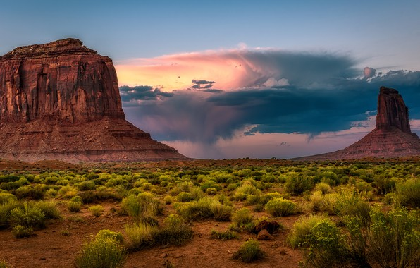 Picture sand, the sky, clouds, mountains, stones, rocks, vegetation, desert, the remains, USA, America, stumps, shrubs, …