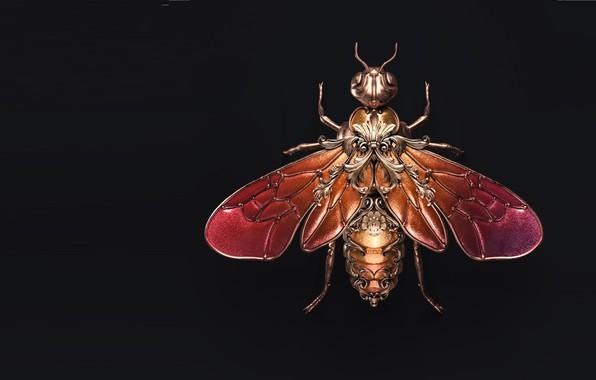 Picture art, fly, brooch, Sasha Vinogradova, Jewel wasp