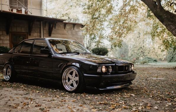 Picture BMW, E34, AC Schnitzer, 5-Series, BIMMER, 540I, BUMER