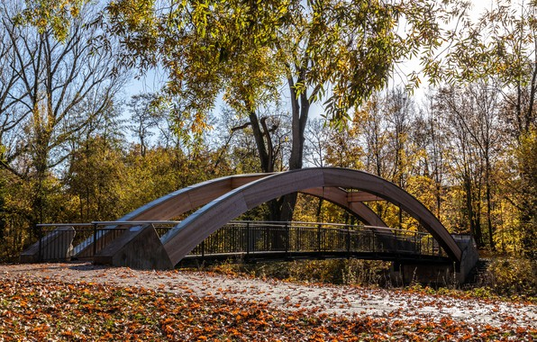 Picture autumn, leaves, the sun, trees, bridge, Park, Germany, yellow, Karlsruhe