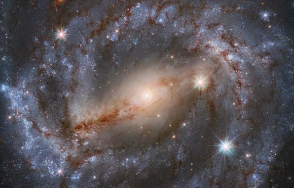 Picture galaxy, galaxy, созвездие Волка, constellation Wolf, Hubble telescope, телескоп Хаббла, NGC 5643
