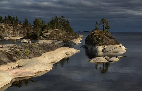 Picture trees, landscape, nature, stones, ate, Lake Ladoga, Ladoga, Maxim Evdokimov, Skerries