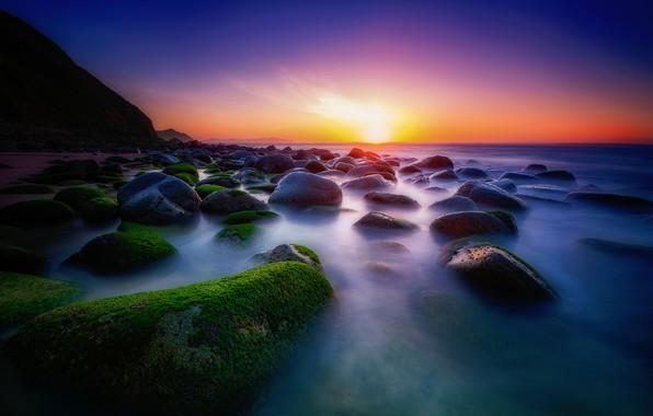 Picture sea, greens, the sky, the sun, light, sunset, blue, bright, stones, rocks, blue, shore, moss, ...