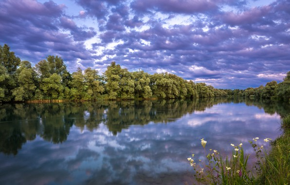 Picture the sky, grass, trees, river, the evening