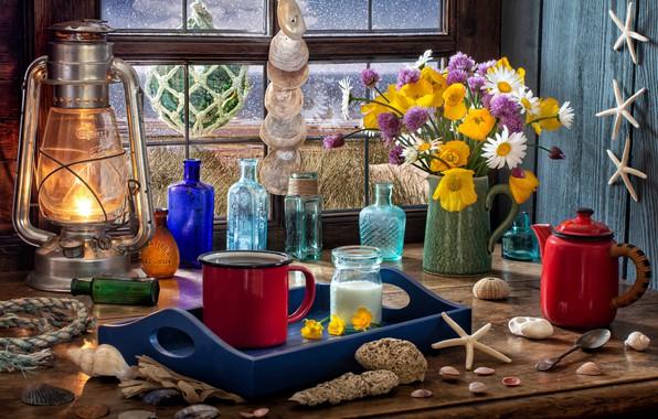 Picture flowers, style, lamp, Maki, coffee, chamomile, bouquet, window, mug, lantern, sugar, shell, bottle, starfish, bottle, …