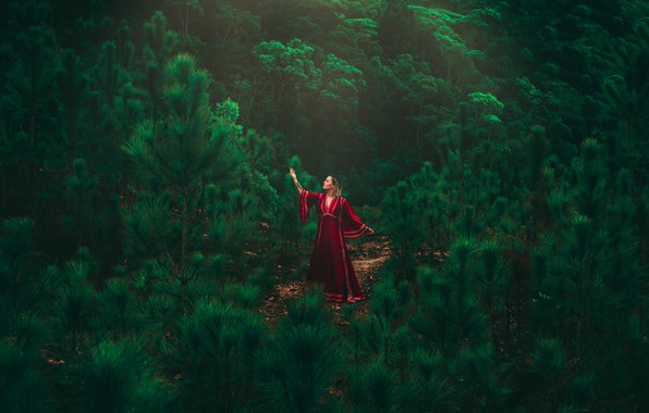 Picture girl, forest, dress, model