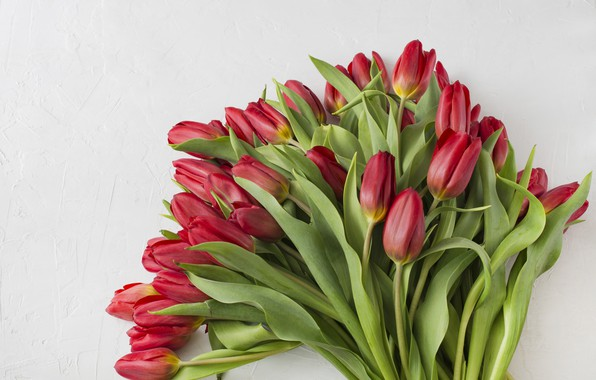 Picture flowers, bouquet, tulips, red, red, flowers, beautiful, romantic, tulips