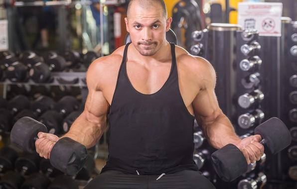 Picture pose, muscle, muscle, pose, training, athlete, dumbbells, gym, bodybuilder, training, Gym, dumbbells, biceps, bodybuilder, gym