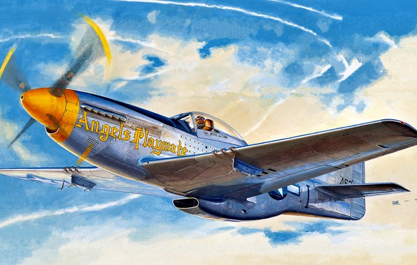 Picture Mustang, fighter, USA, USAF, North American, P-51D, long-range, 354th Fighter Group, Modification, 353rd Fighter Sguadron