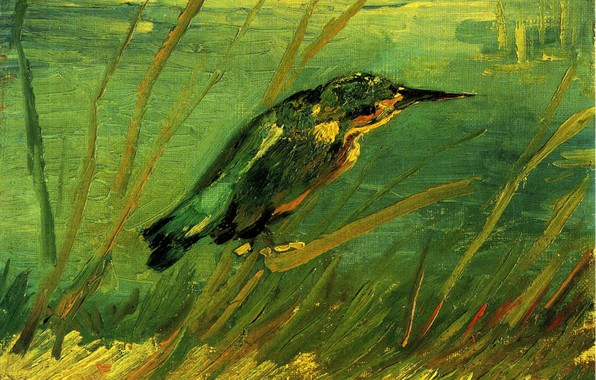 Picture beak, forty, Vincent van Gogh, The Kingfisher