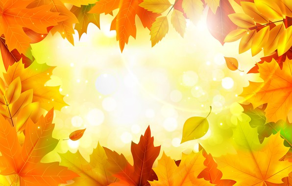 Picture autumn, leaves, background, colorful, maple, background, autumn, leaves, maple