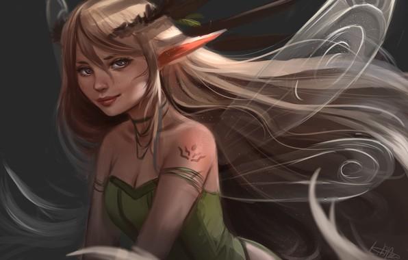 Picture fantasy, fairy, elf