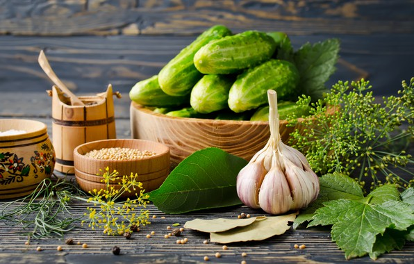 Picture spices, Cucumbers, Garlic, Dill