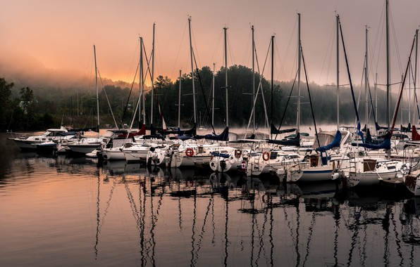 Picture fog, lake, yachts, morning