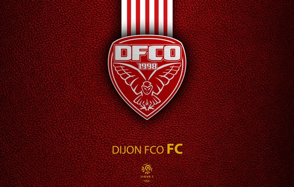 Wallpaper Wallpaper Sport Logo Football Ligue 1 Dijon