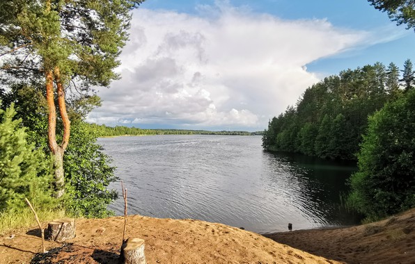 Picture The sky, Water, Sand, Nature, Clouds, Beach, Lake, Trees, Summer, Clouds, Spruce, Landscape, Tree, Picnic, …