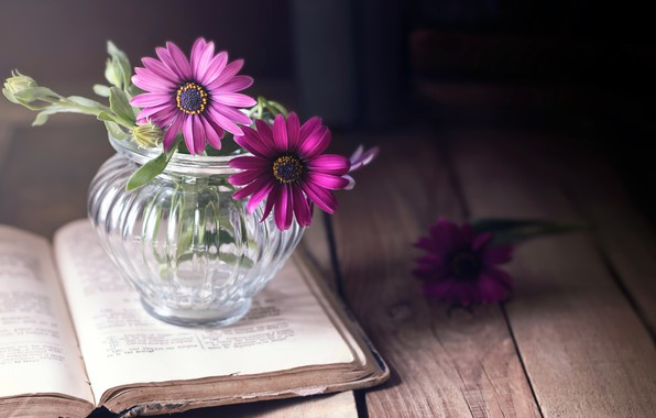 Picture flowers, background, book